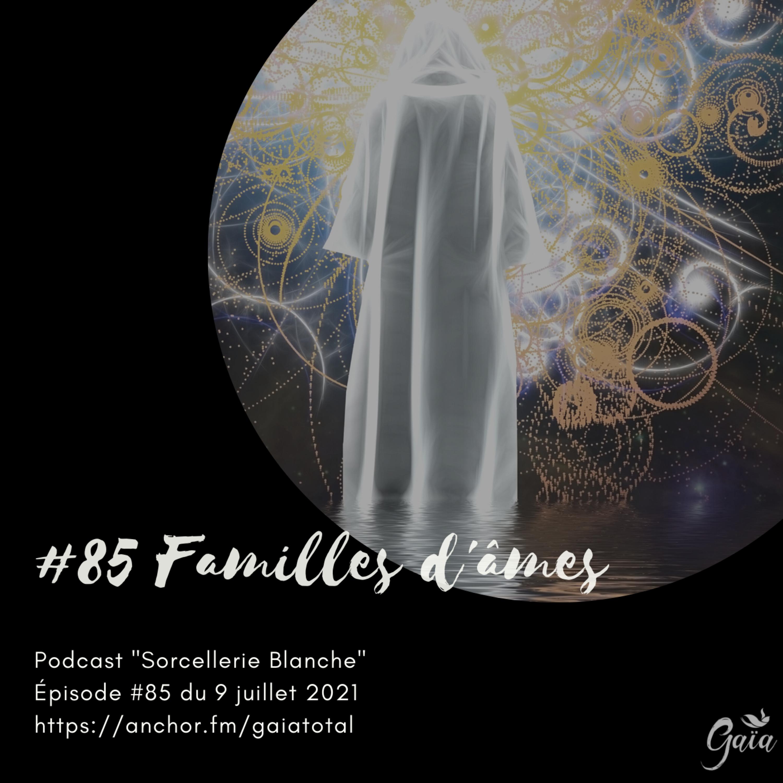 #85 Familles d'âmes