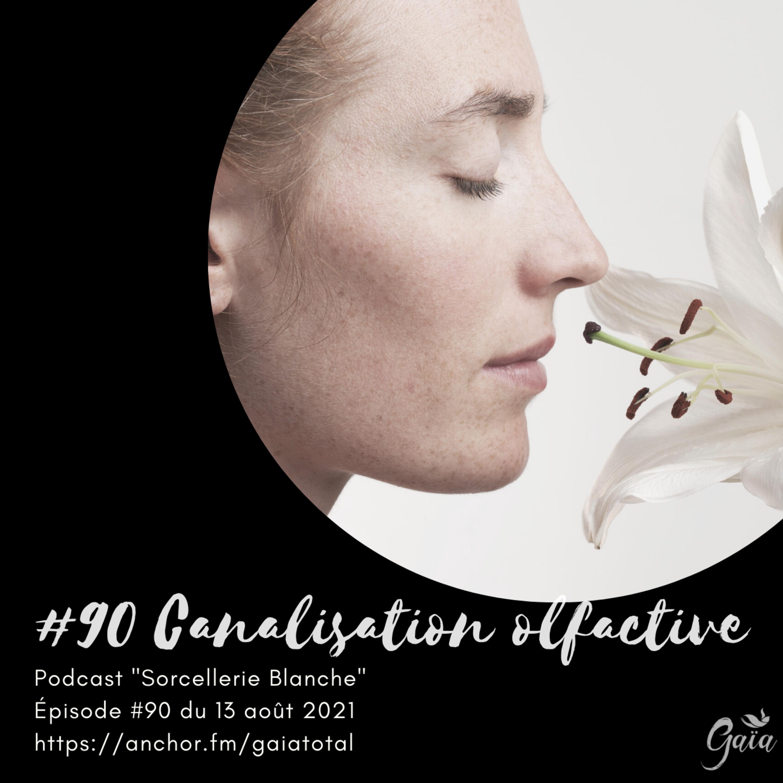 #90 Canalisation olfactive