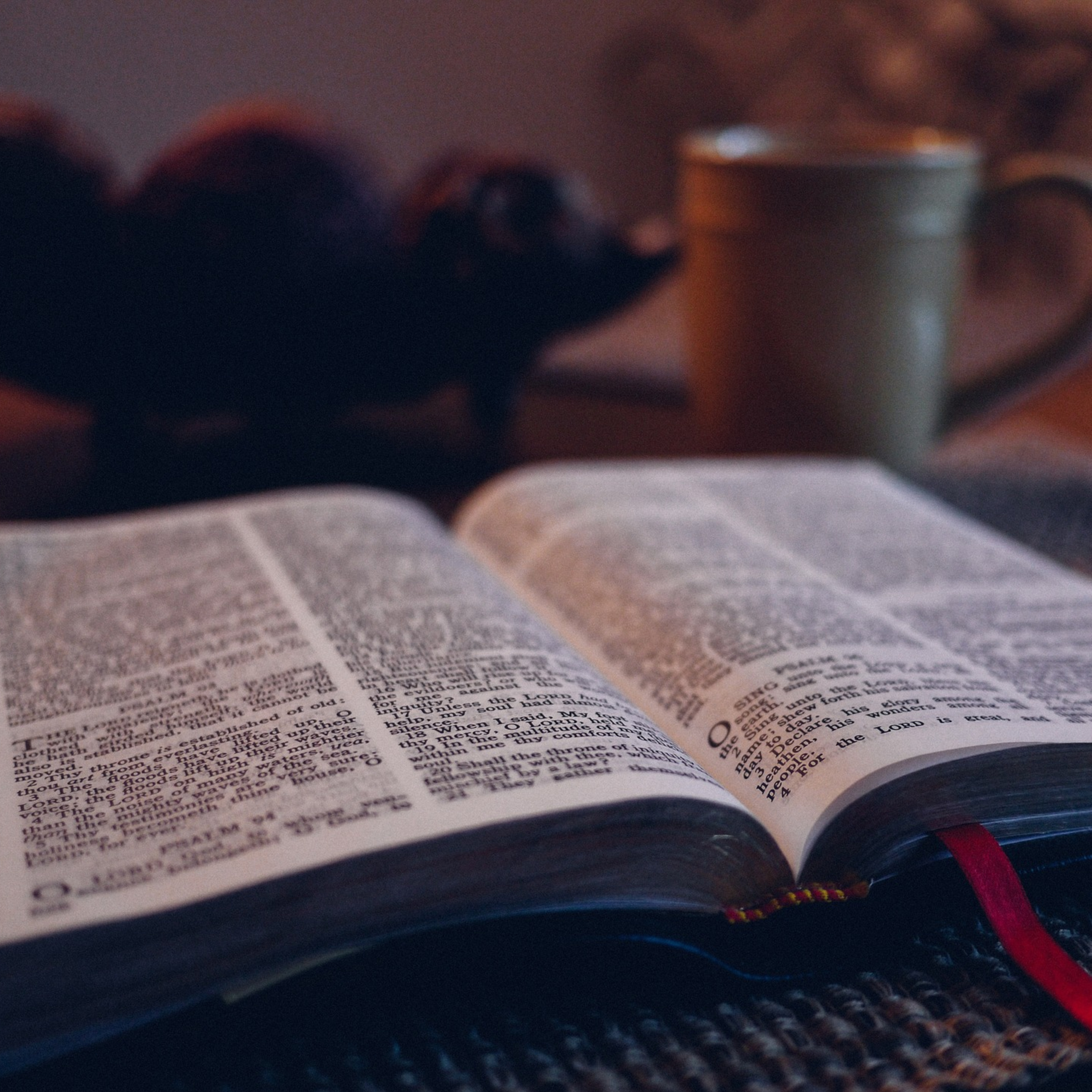 Bible Time, Reading the KJV Together | Listen Free on Castbox