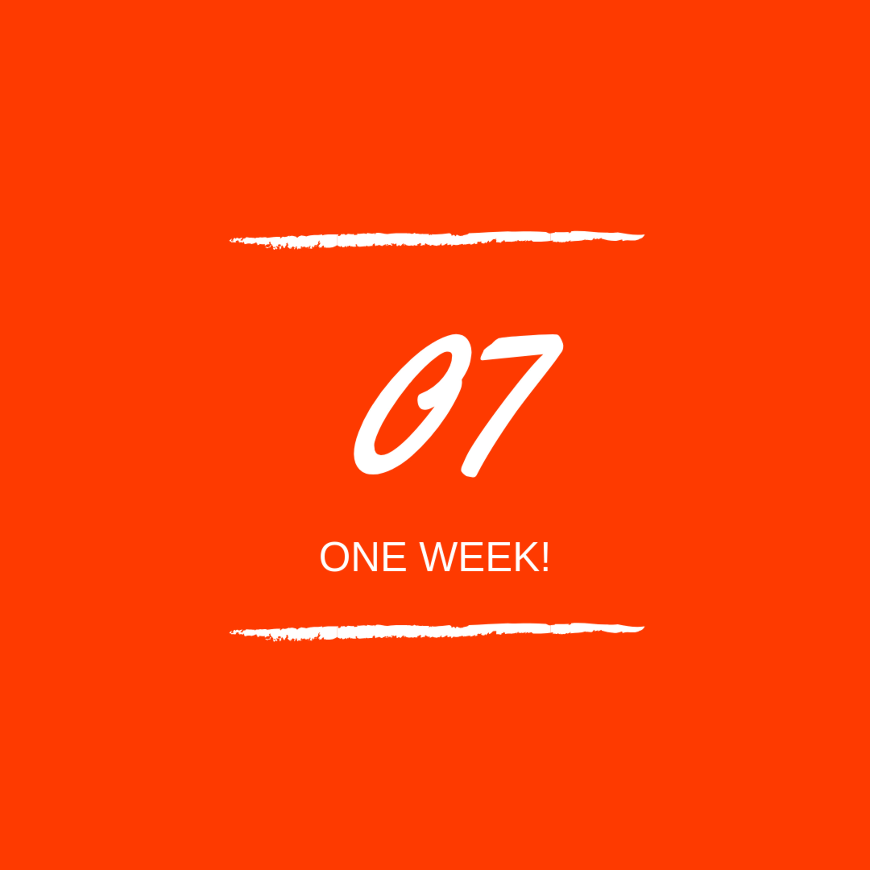 Day 07 : 🎉 One Week!