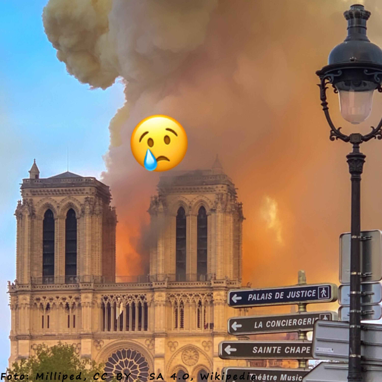 #020 - Eine Kathedrale brennt!