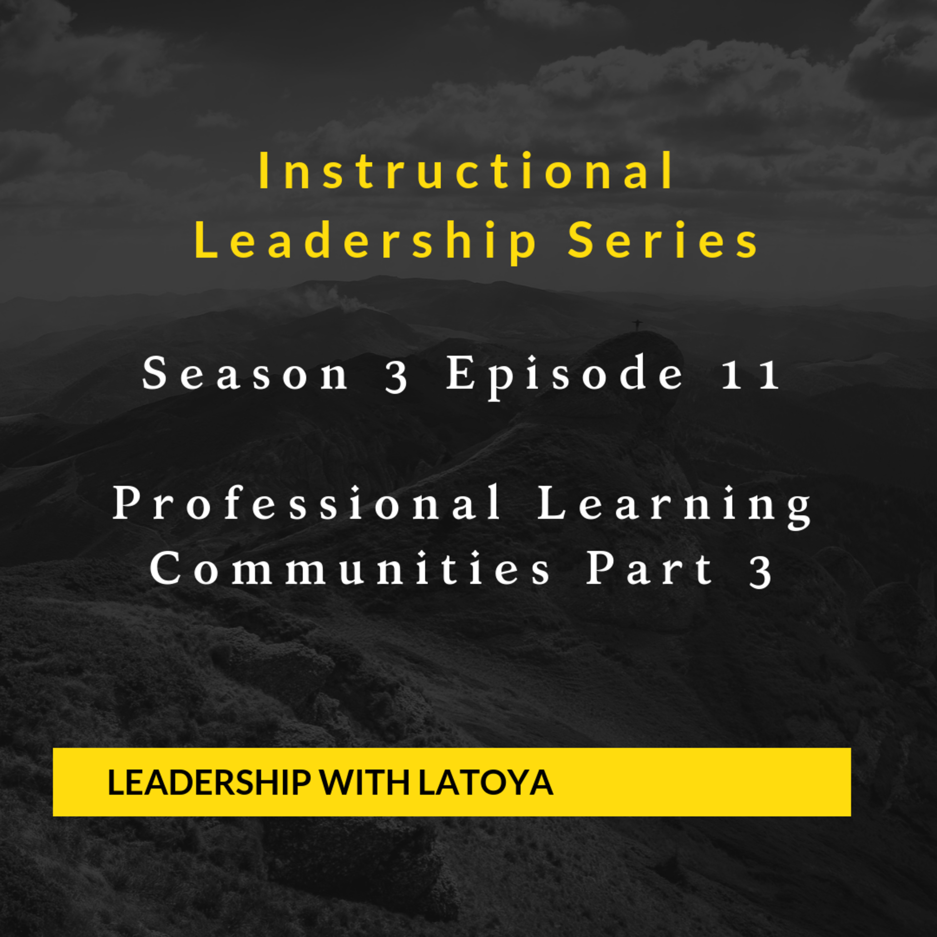 S3E11 Professional Learning Communities Part Three