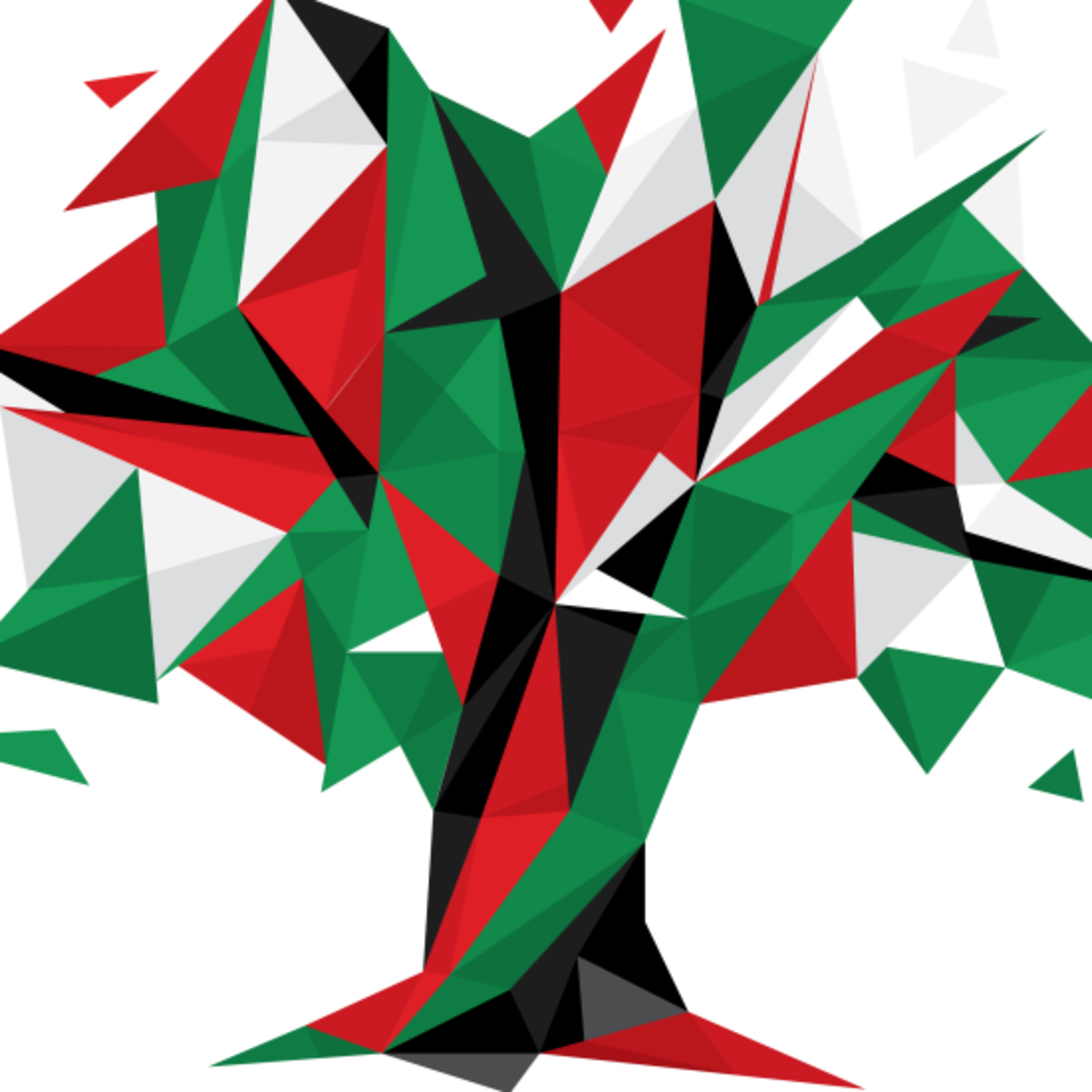Ep 57- Palestine and BDS (Boycott, Divestment and Sanctions)