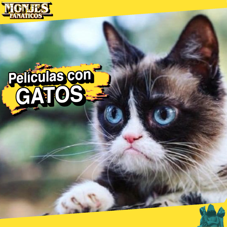 153 - Películas Con Gatos 🐱
