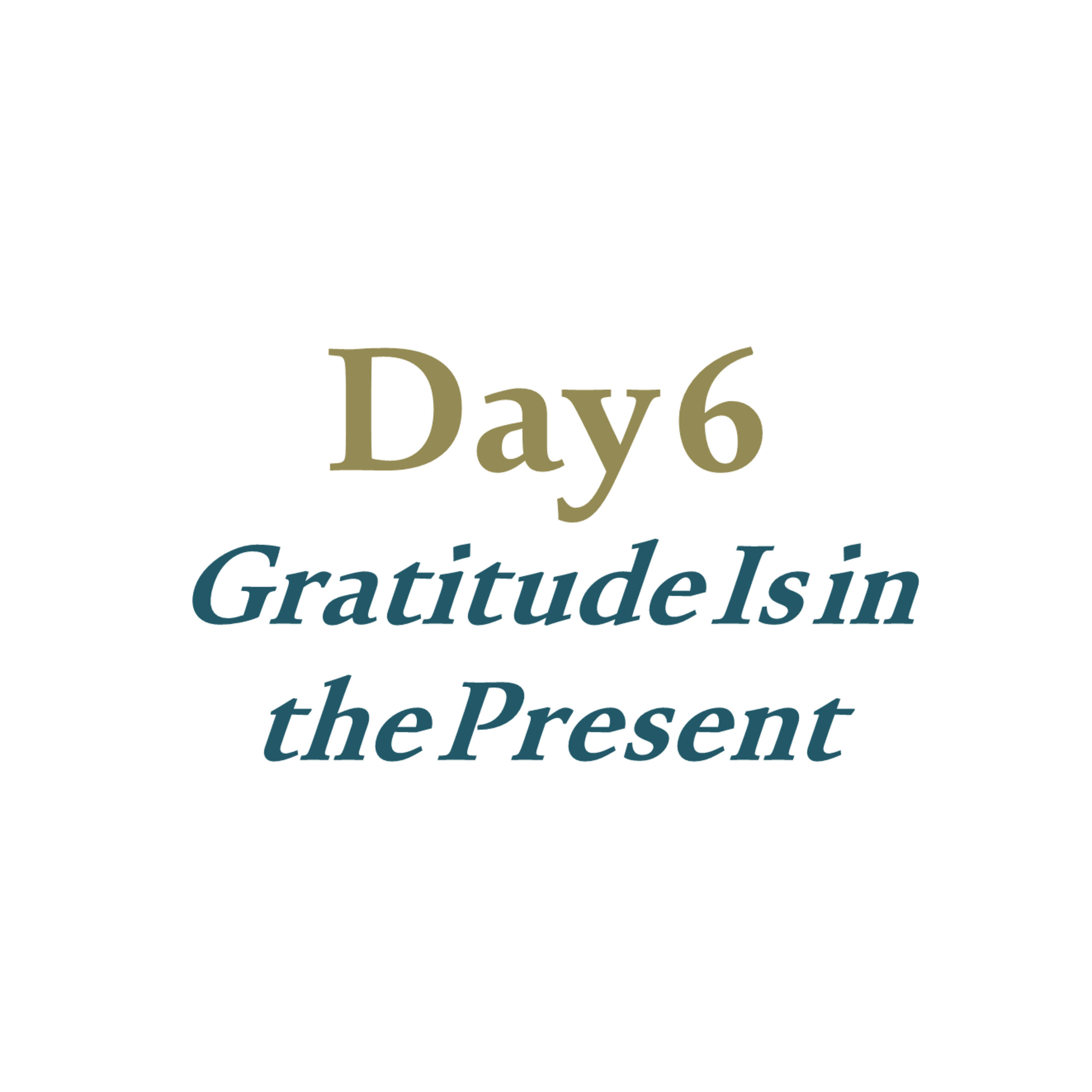 Day 6 - Gratitude Is in the Present