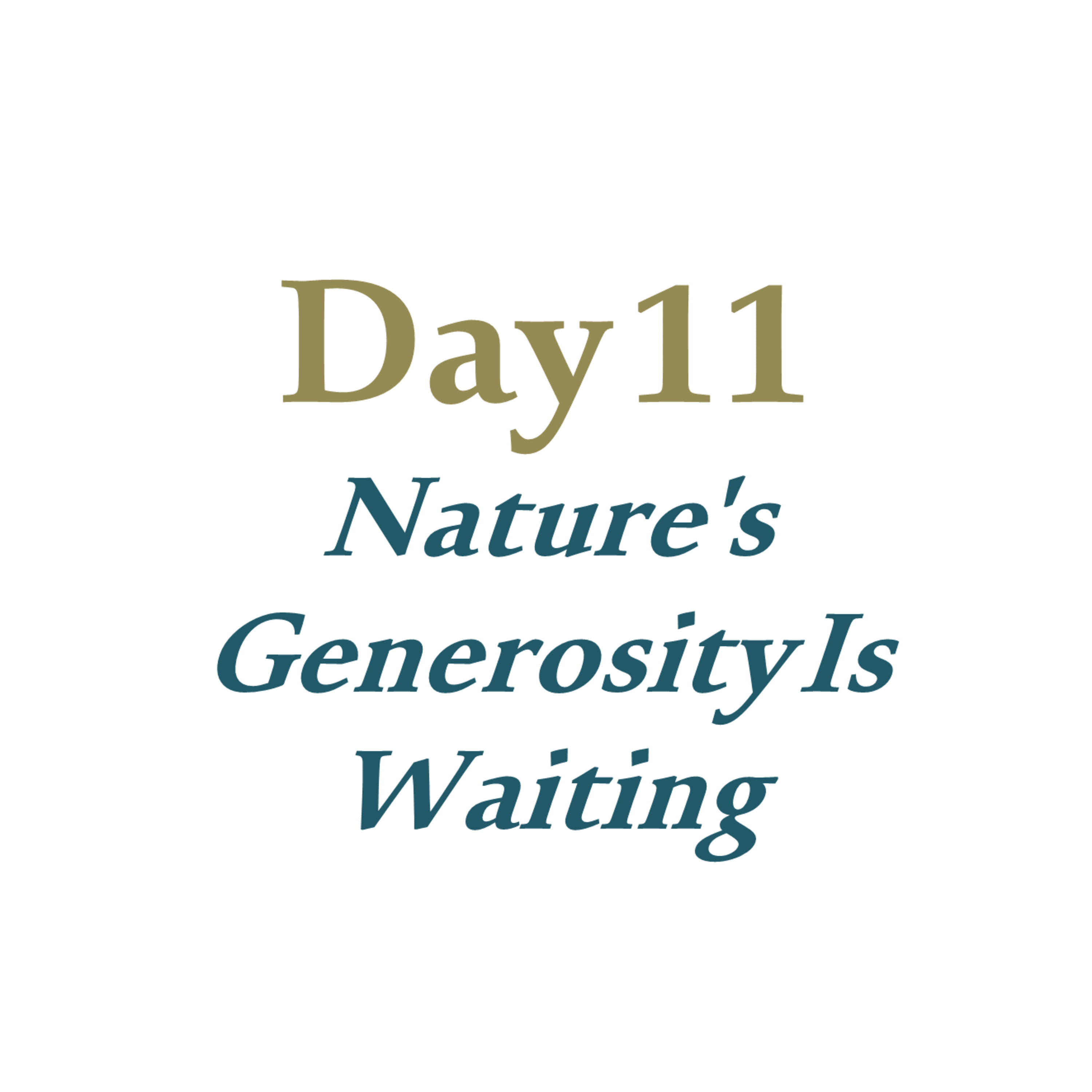 Day 11 - Nature's Generosity Is Waiting