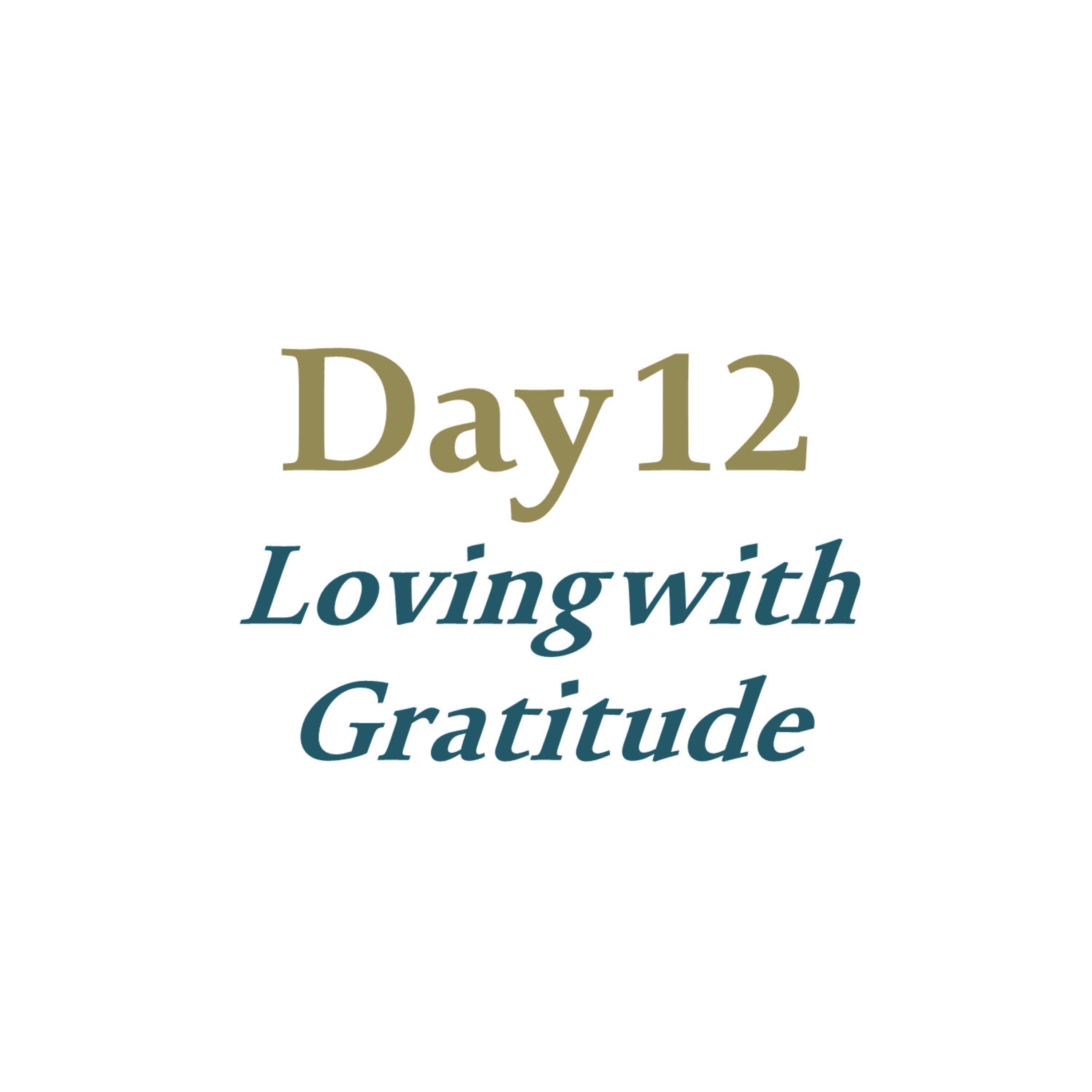 Day 12 - Loving with Gratitude