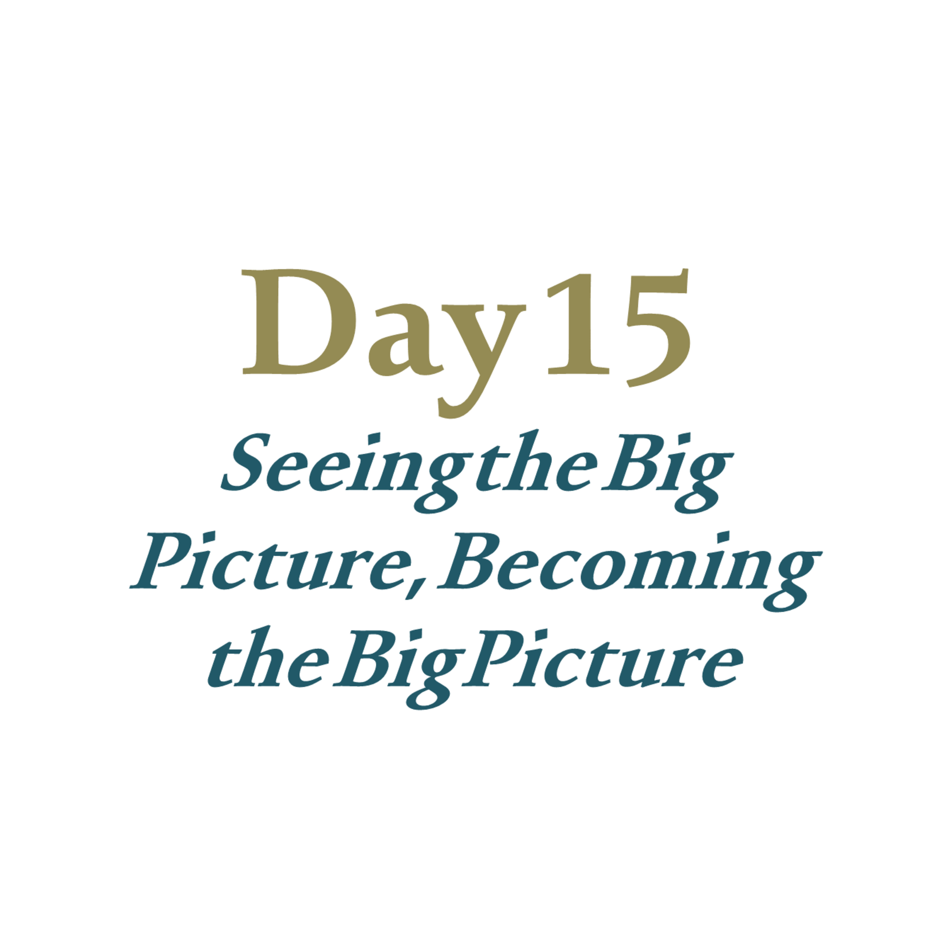 Day 15 - Seeing the Big Picture, Becoming the Big Picture
