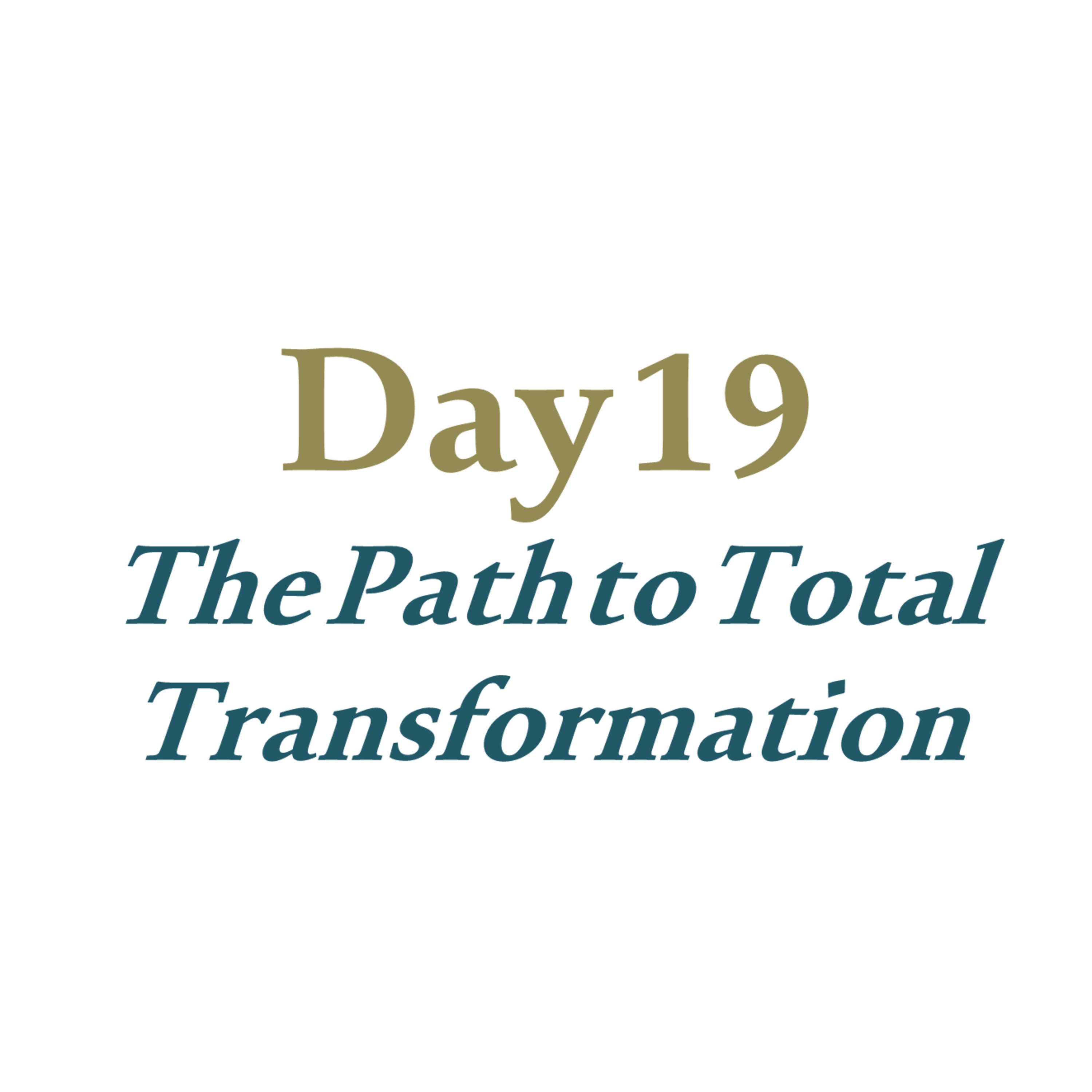 Day 19 - The Path to Total Transformation