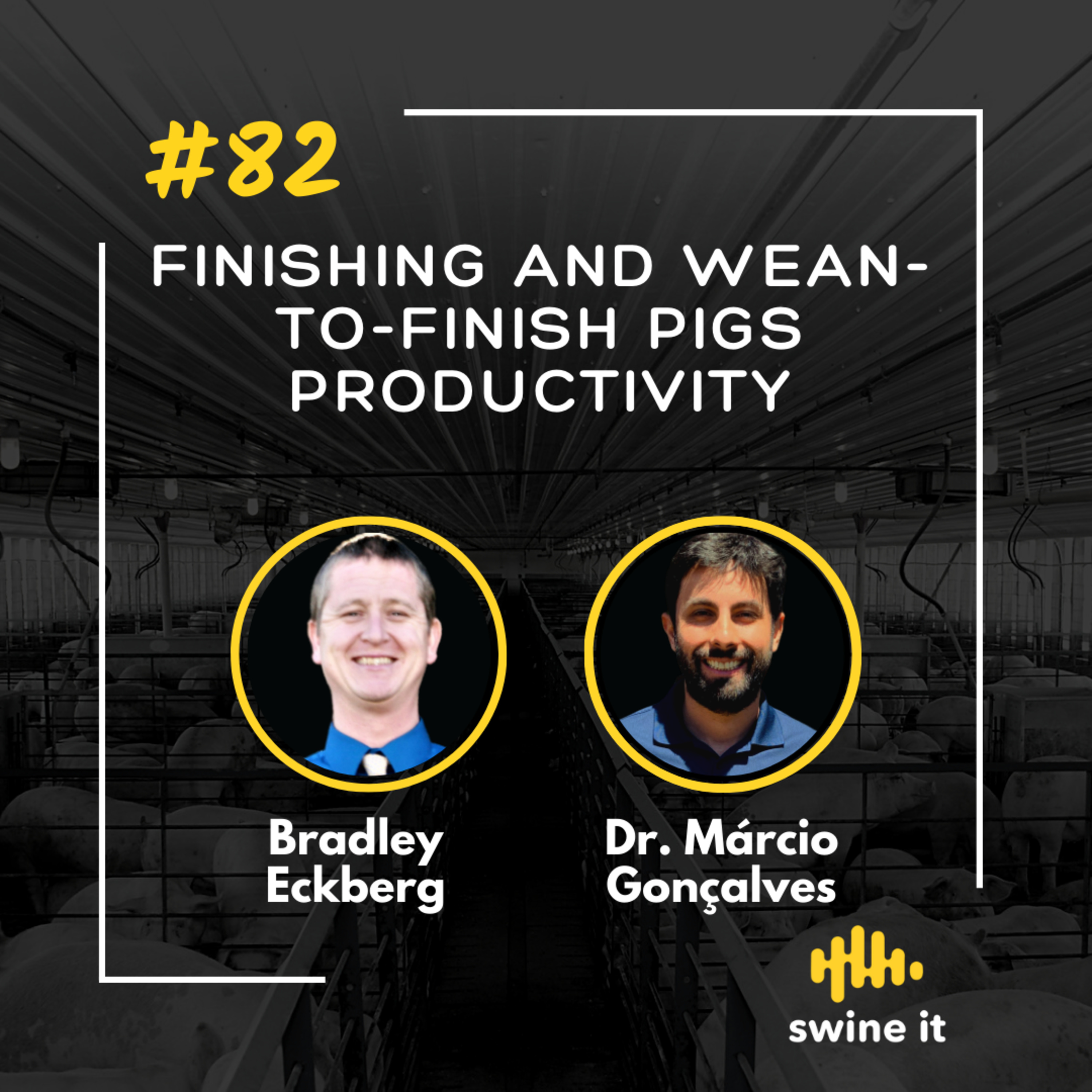 Finishing and wean-to-finish pigs productivity - Bradley Eckberg