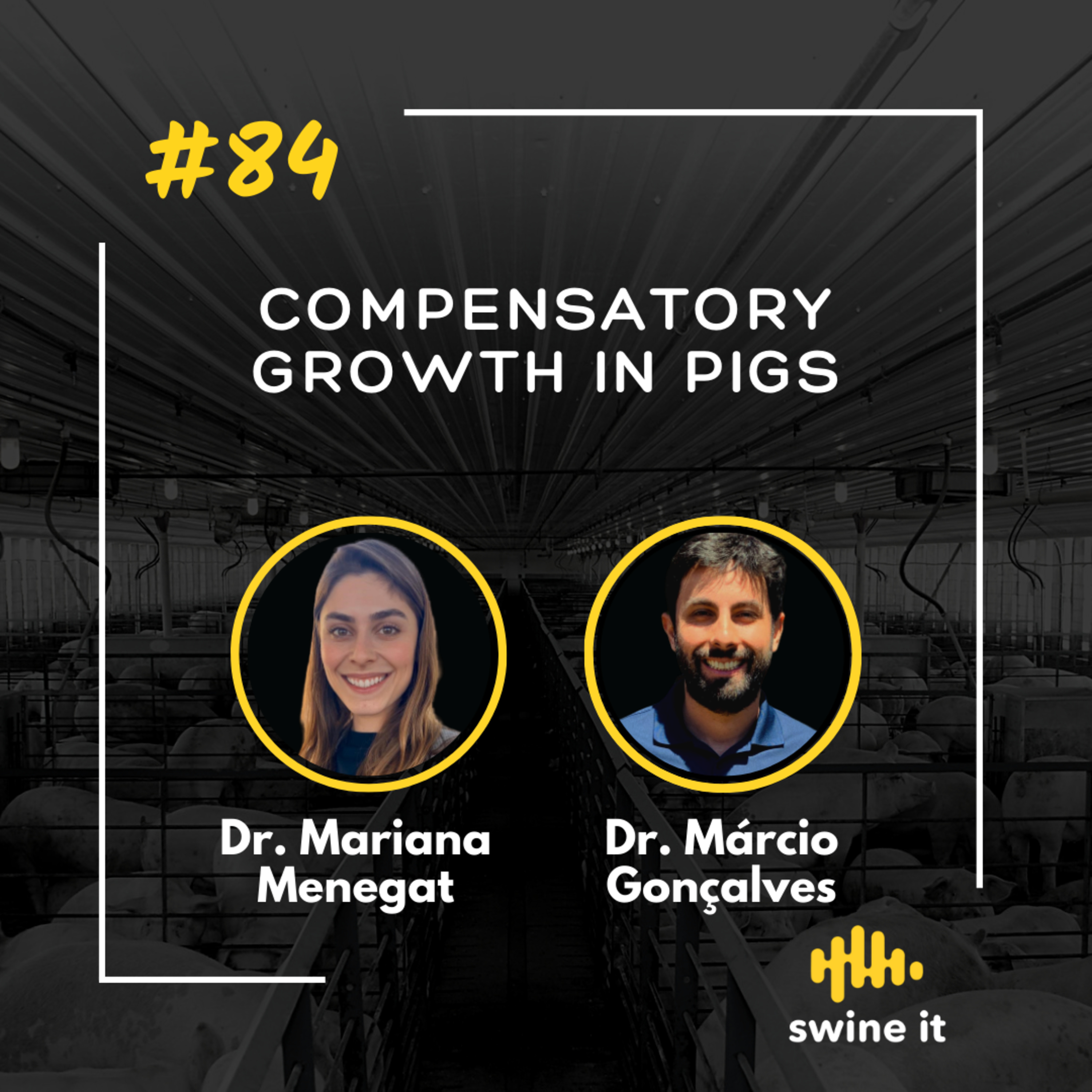 Compensatory growth in pigs - Dr. Mariana Menegat