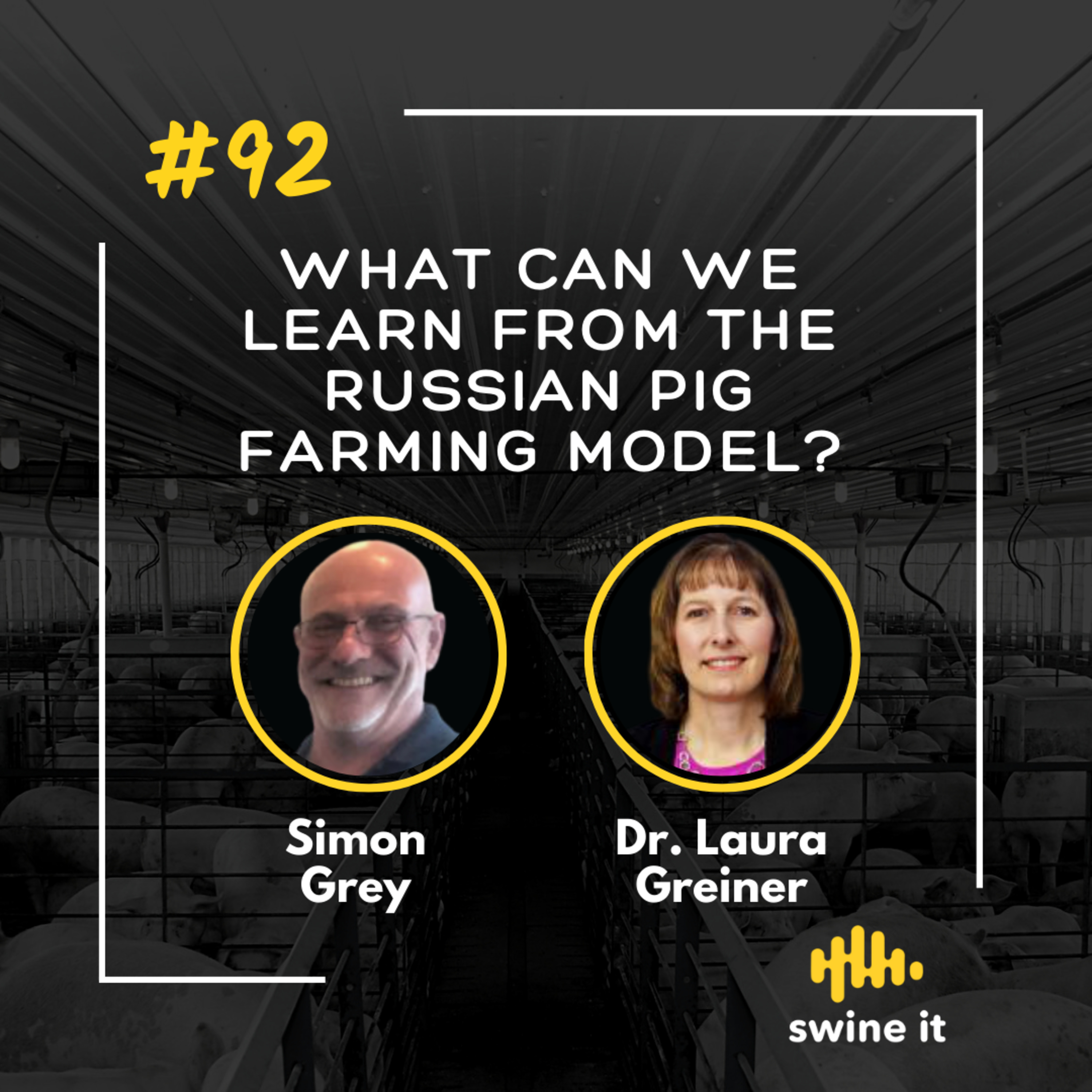 What can we learn from the Russian pig farming model? - Simon Grey