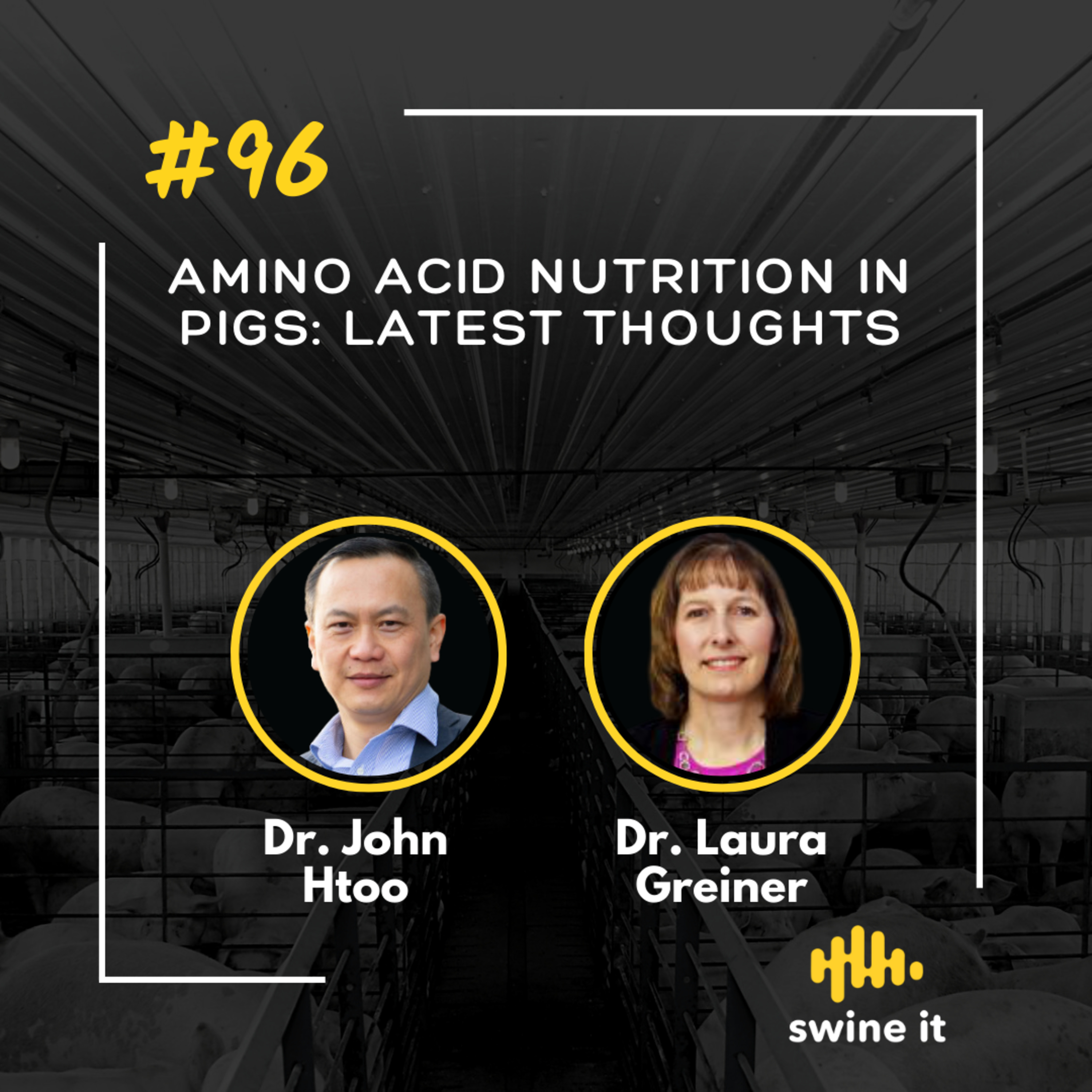Amino acid nutrition in pigs: latest thoughts - Dr. John Htoo