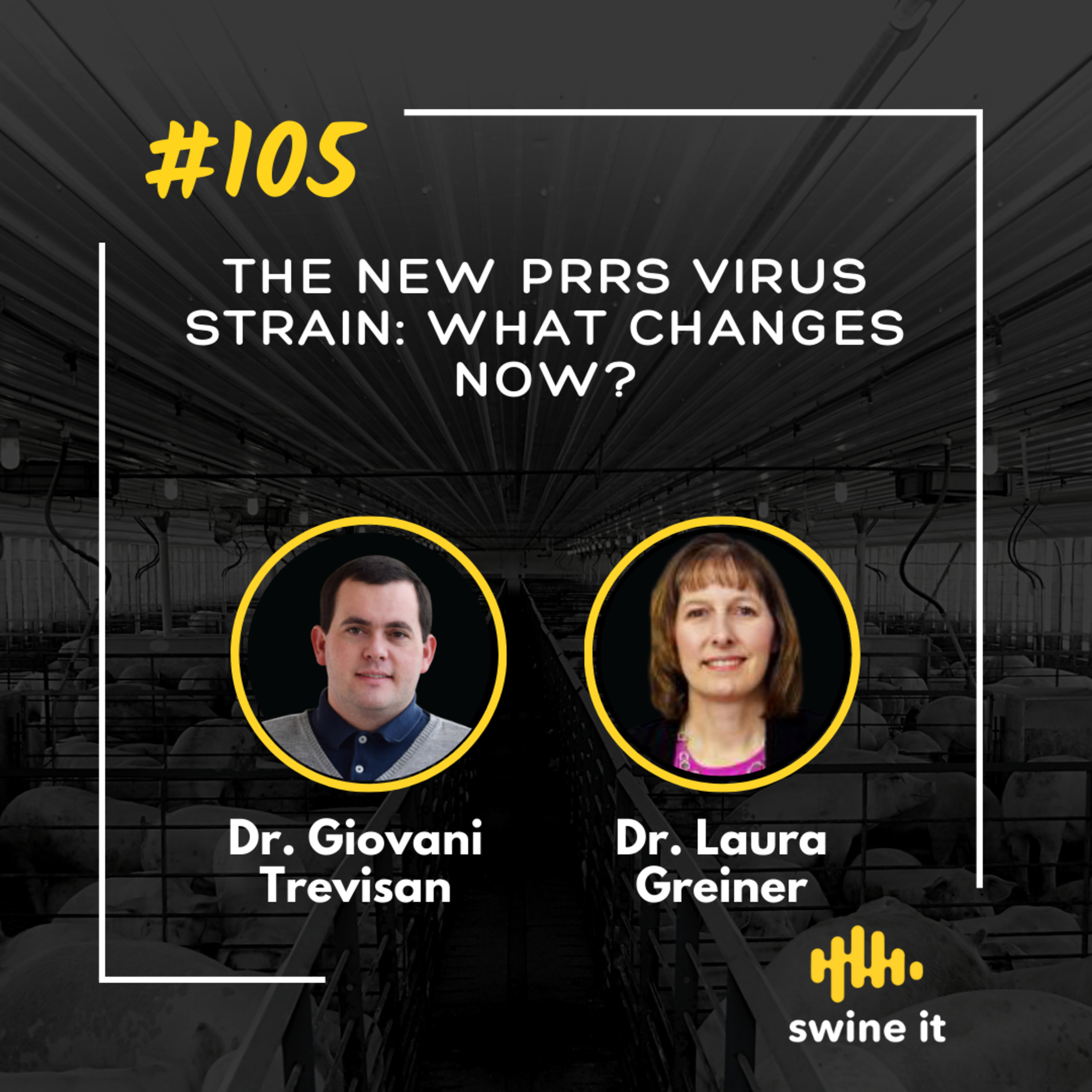 The new PRRS virus strain: what changes now? - Dr. Giovani Trevisan