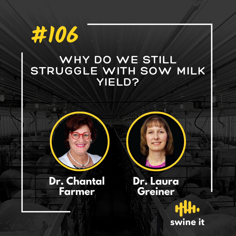 Why do we still struggle with sow milk yield? - Dr. Chantal Farmer