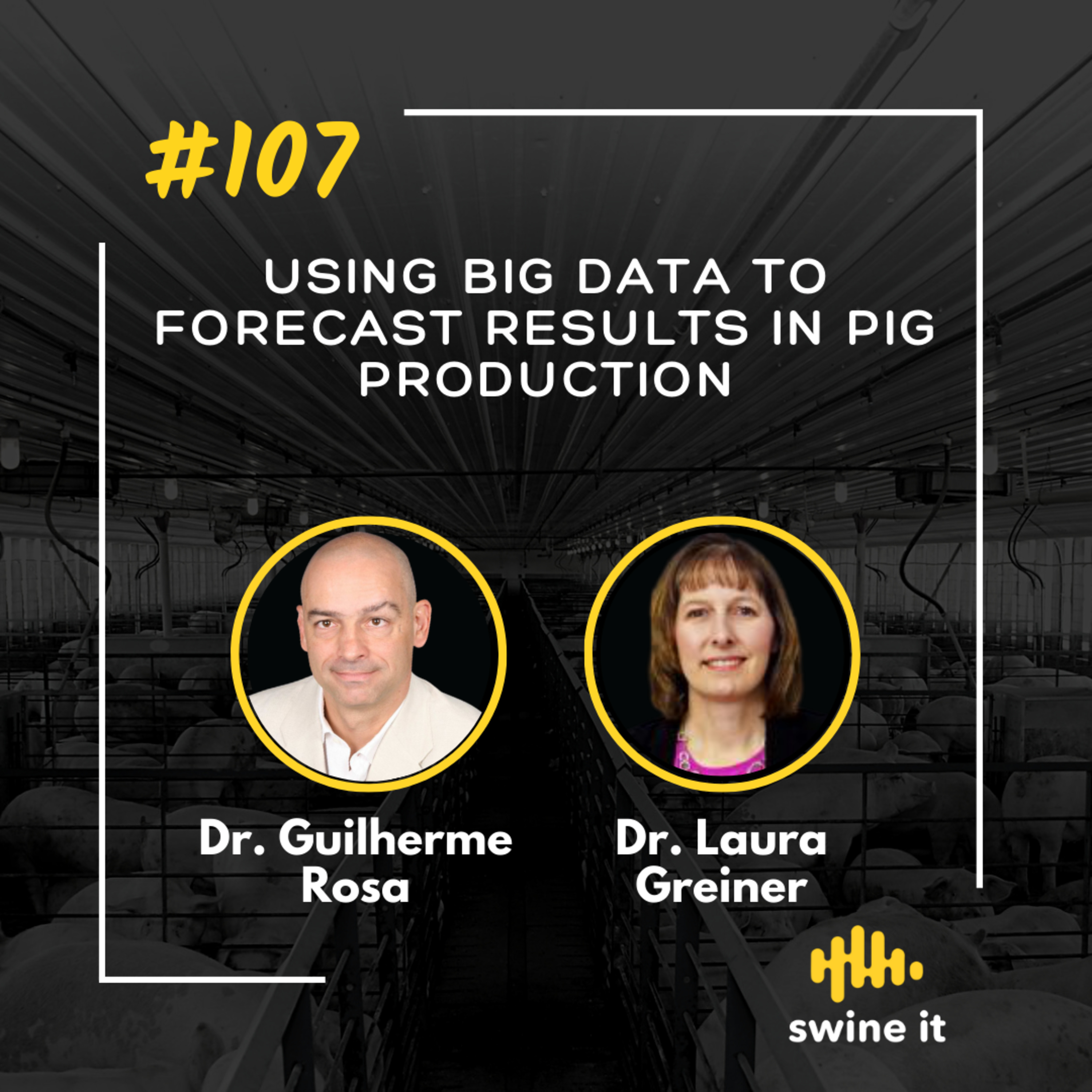 Using big data to forecast results in pig production - Dr. Guilherme Rosa