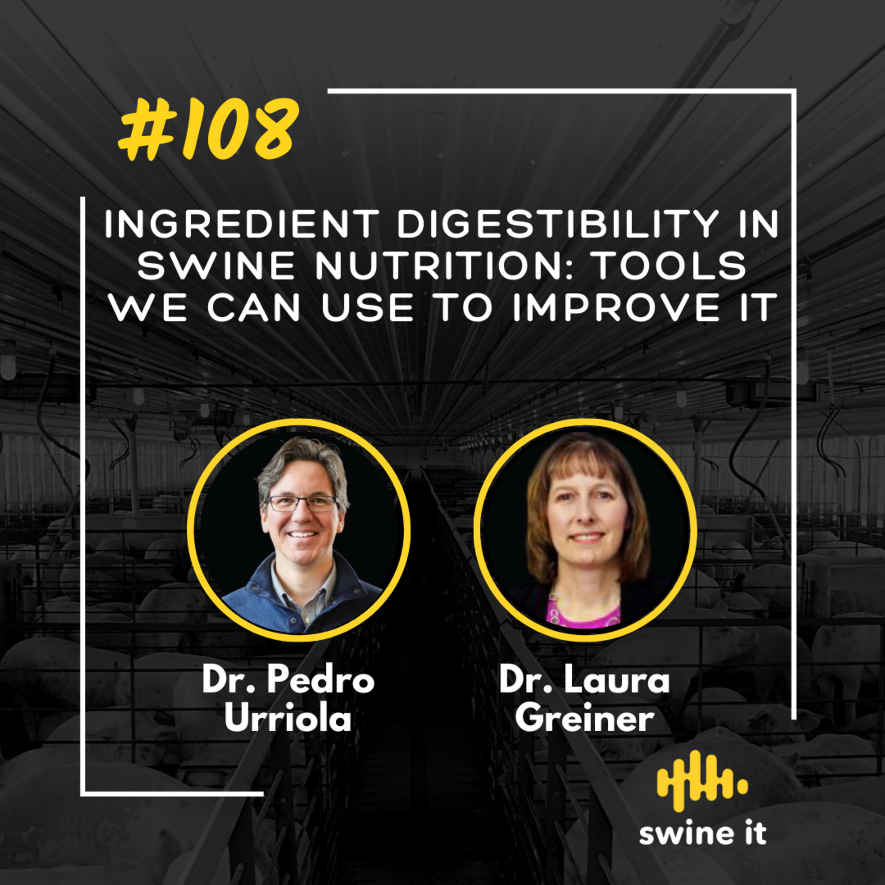 Ingredient digestibility in swine nutrition: tools we can use to improve it - Dr. Pedro Urriola