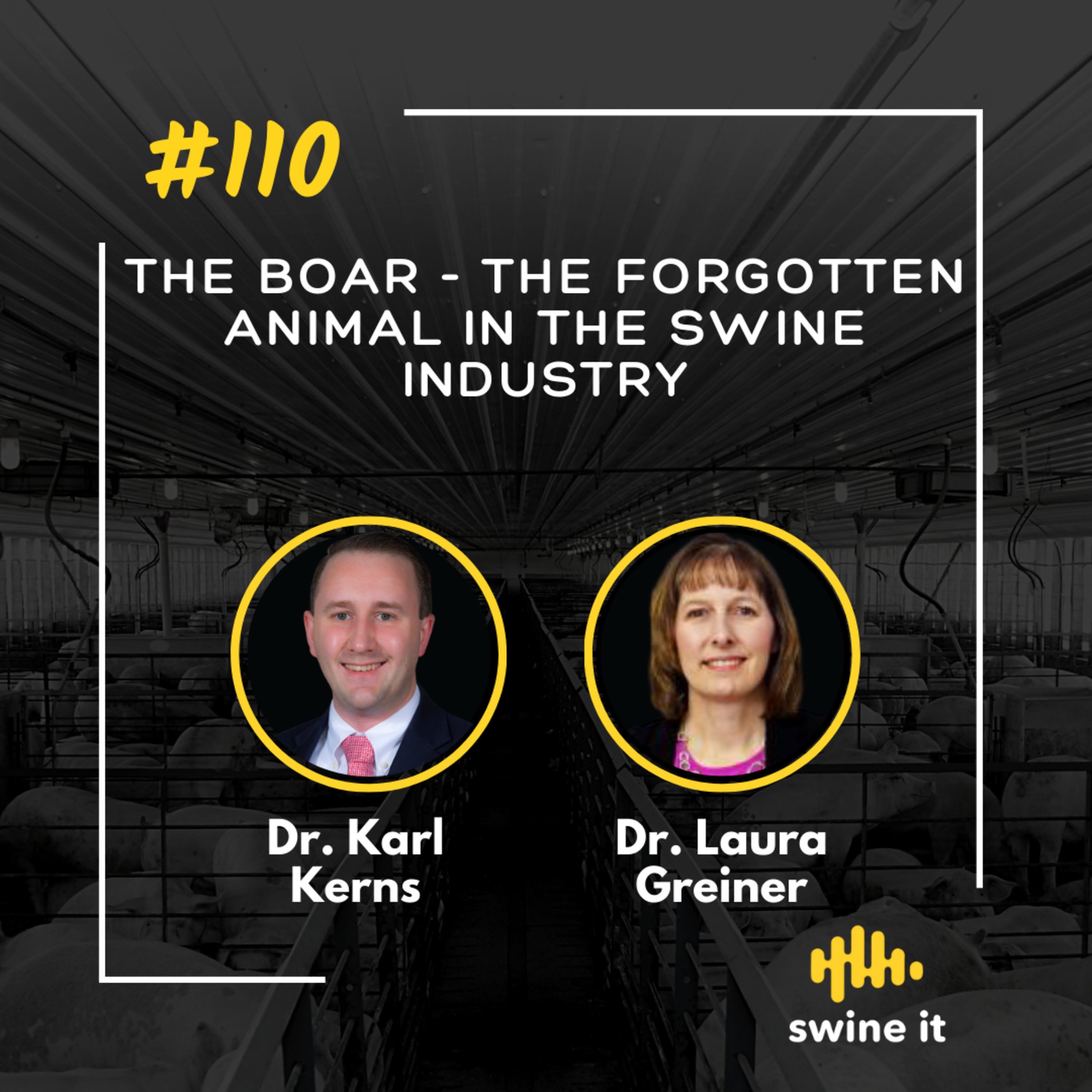 The Boar - the forgotten animal in the swine industry - Dr. Karl Kerns