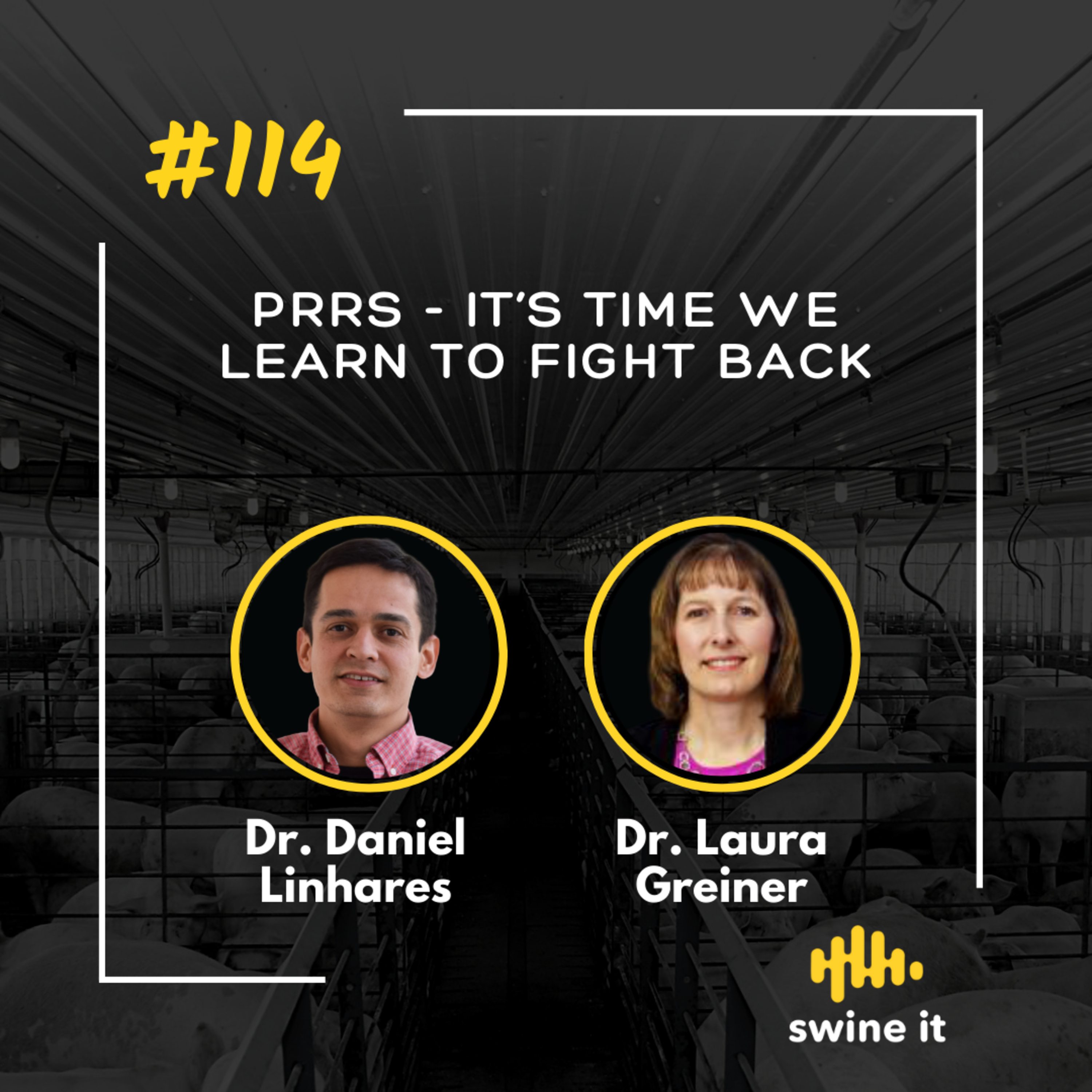 PRRS - it's time we learn to fight back - Dr. Daniel Linhares
