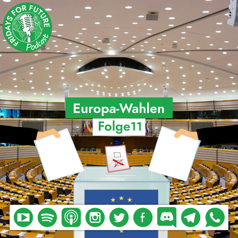 1.11 | Die Europawahl