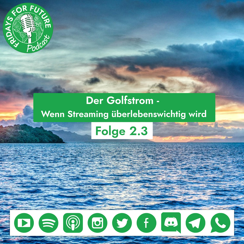 2.3 | Der Golfstrom - Wenn Streaming lebenswichtig wird