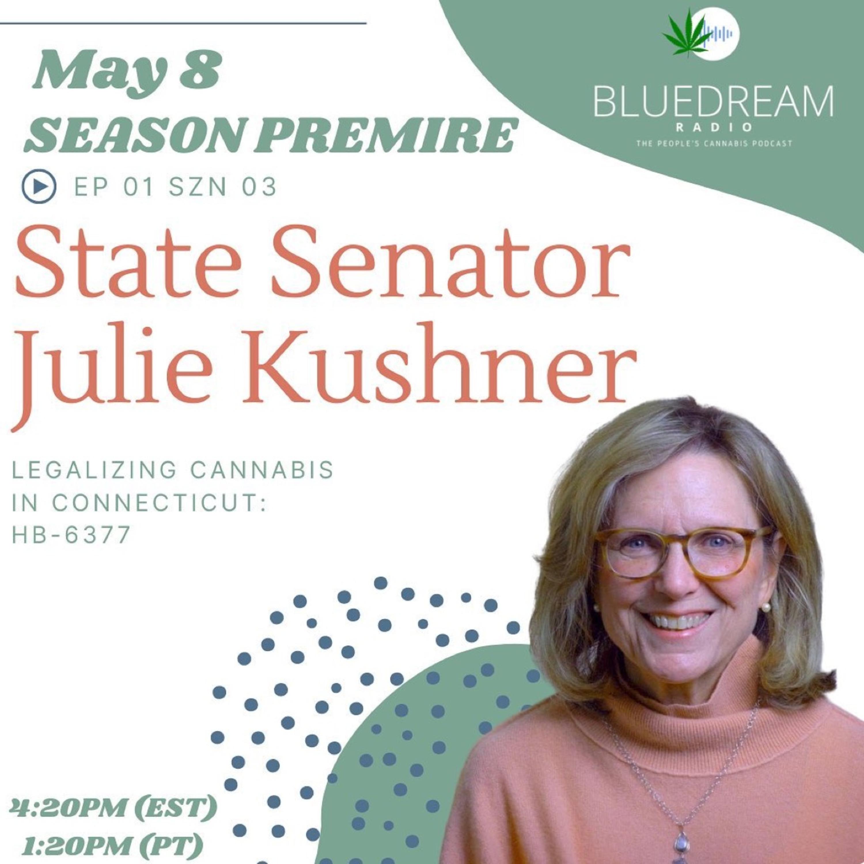 Legalizing Cannabis In Ct w/ State Senator Julie Kushner
