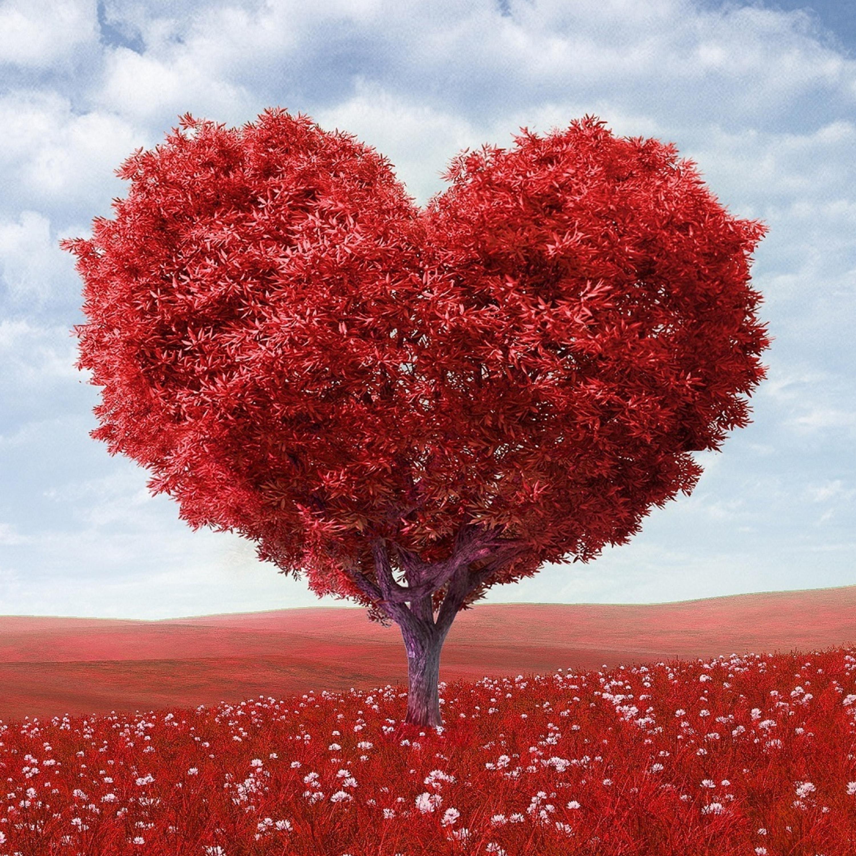 698 Hz | Heart Awakening | Expanding into Universal Love