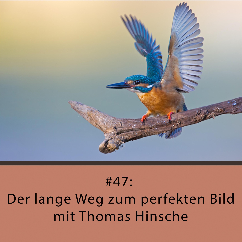 Der lange Weg zum perfekten Bild – mit Thomas Hinsche