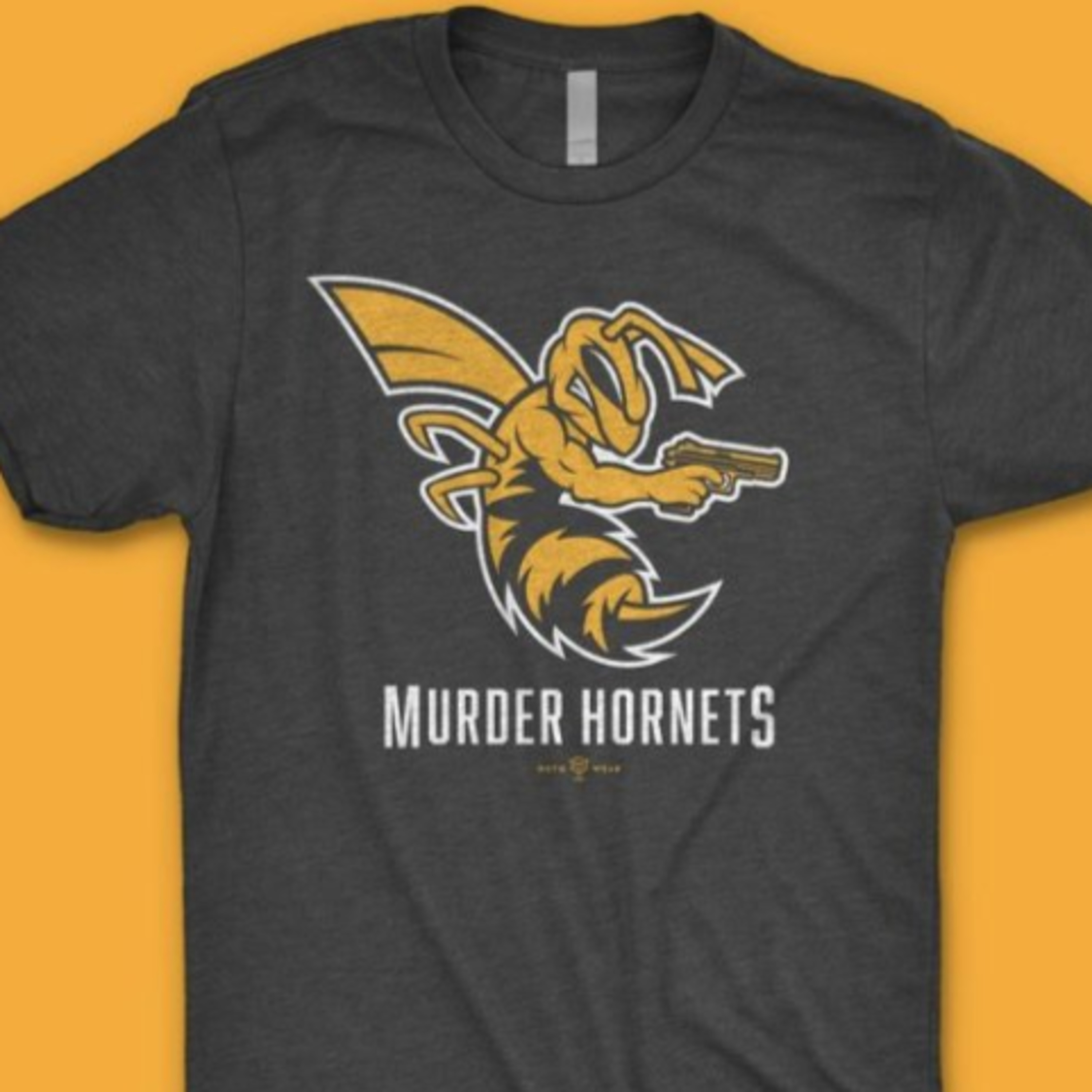 #93 | Murder Hornets | Positivity in Chaos | Comprehension | Conspiracy | New Podcast | TMMAConspiracy | Covid-19 | Media | Television | Pandemic | New Norm | Better World | Veil is Lifting