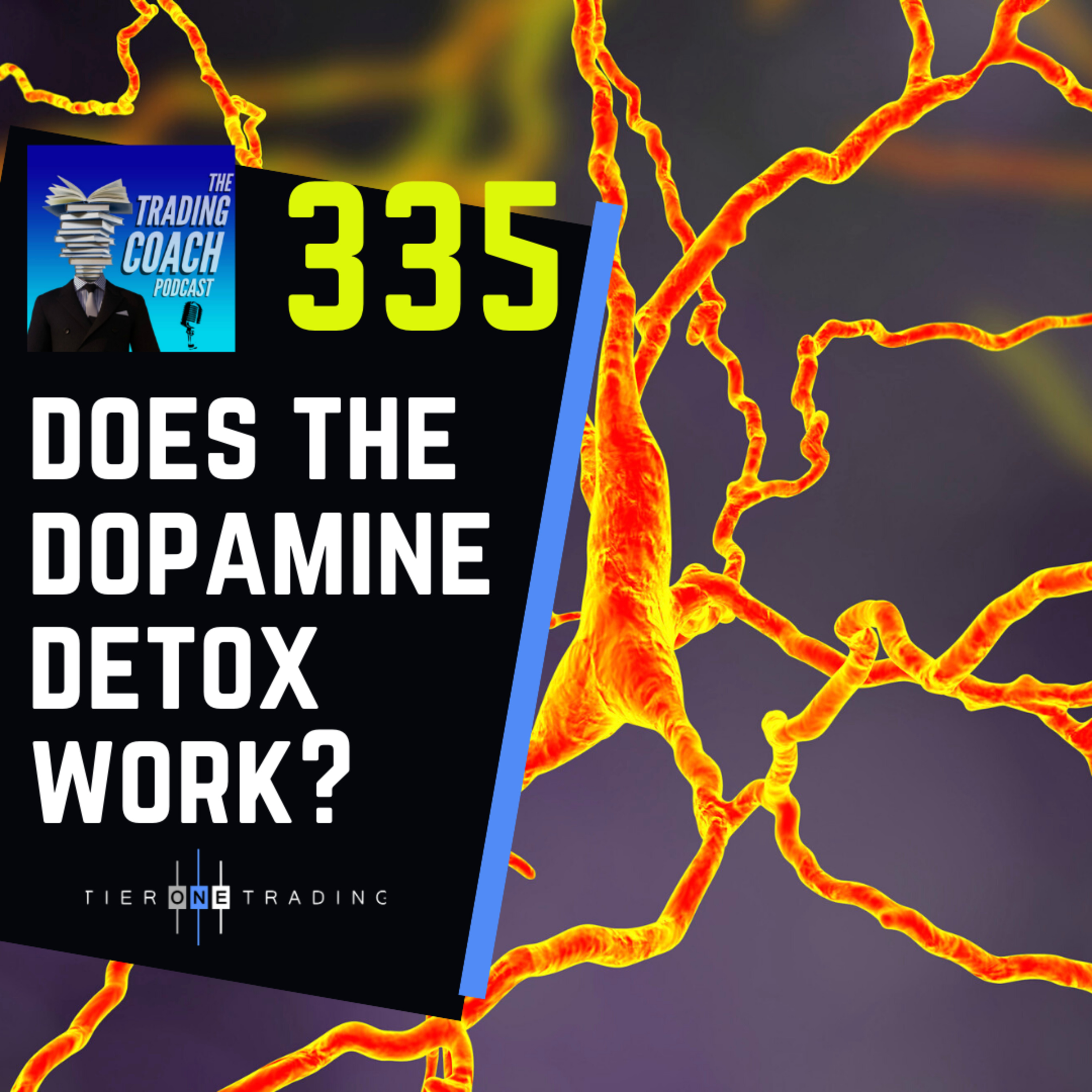 335 - Does The Dopamine Detox Work?