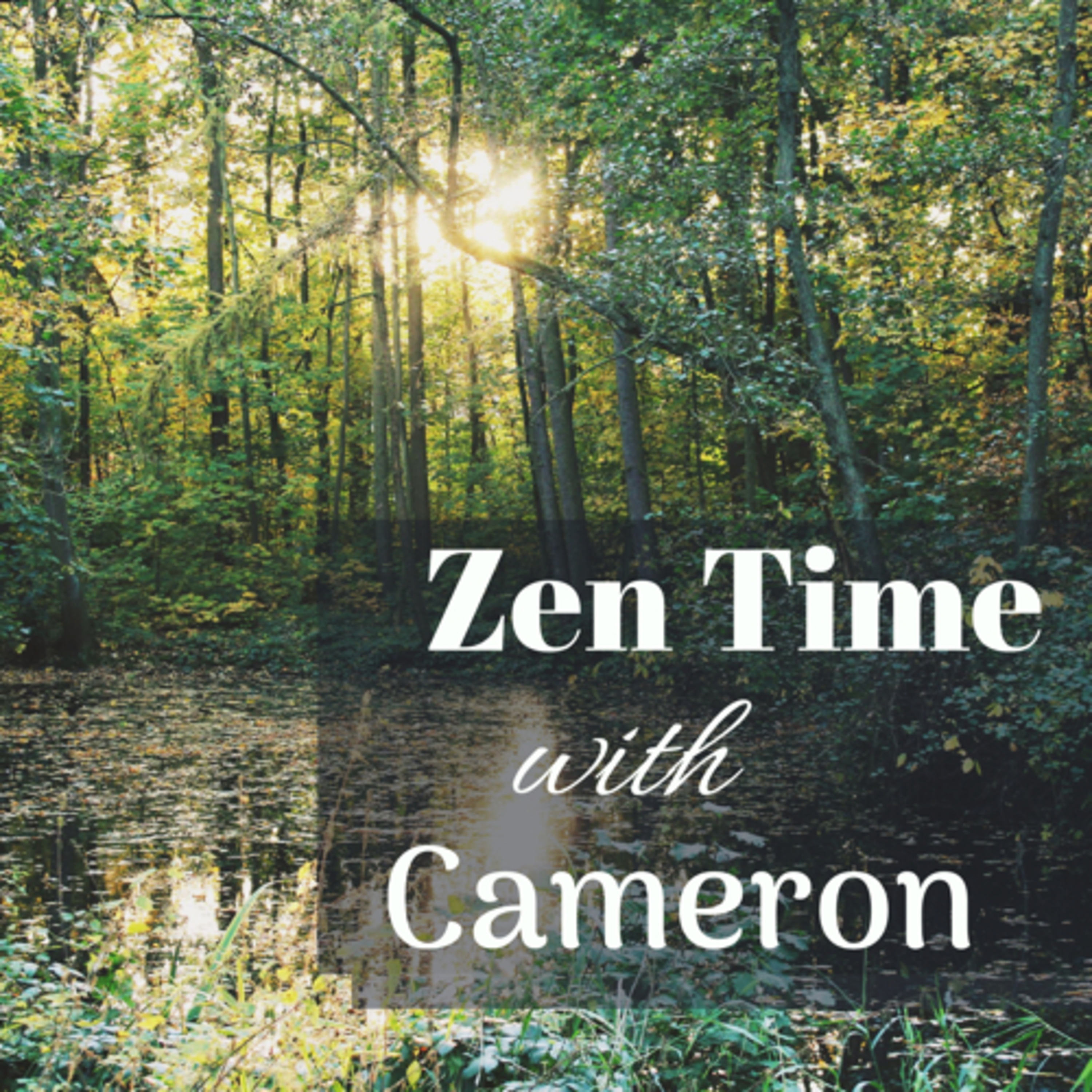 Zen Time with Cameron Ep.8 Mindfulness digging deeper