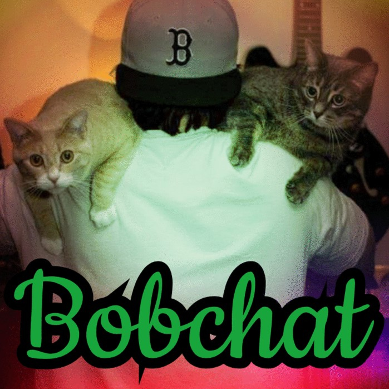 Bobchat Episode 15: House Cat King