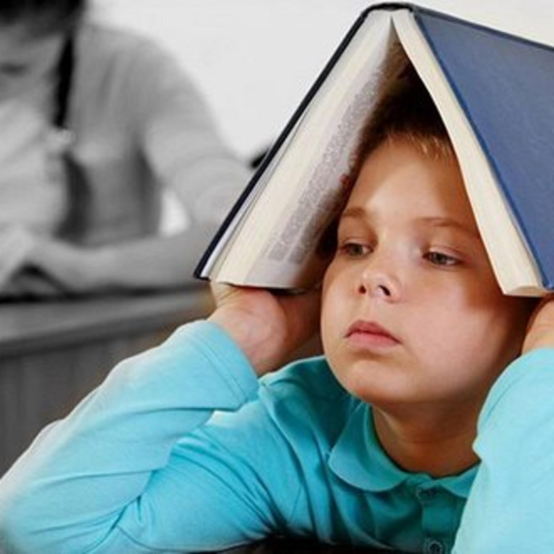 فصل دوم – مشکلات کلاس های انگلیسی در مدارس