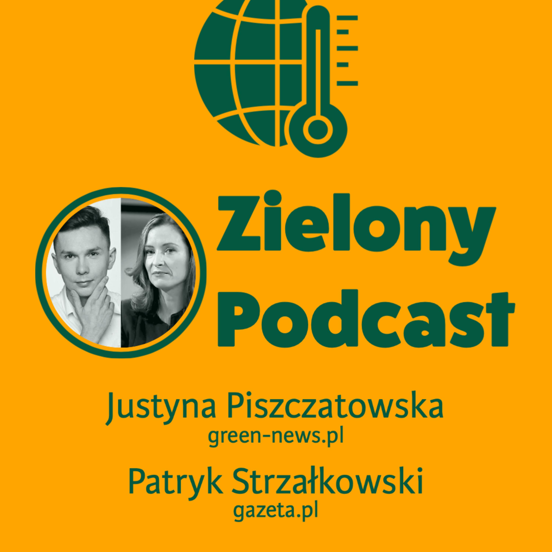Co nas czeka w 2021 roku? Justyna Piszczatowska, green-news.pl i Patryk Strzałkowski, gazeta.pl