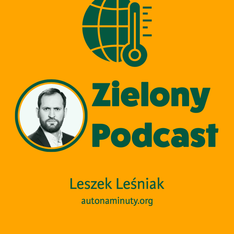 Schody przed polskim carsharingiem. Leszek Leśniak, autonaminuty.org
