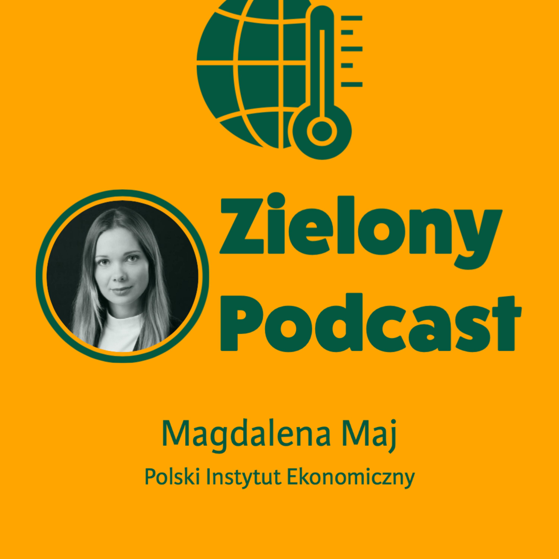 ABC zielonego wodoru. Magdalena Maj, Polski Instytut Ekonomiczny