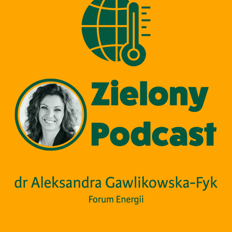 OZE wygrało w 2020 w Unii Europejskiej. Polska energetyka najbardziej emisyjna. Dr Aleksandra Gawlikowska-Fyk, Forum Energii