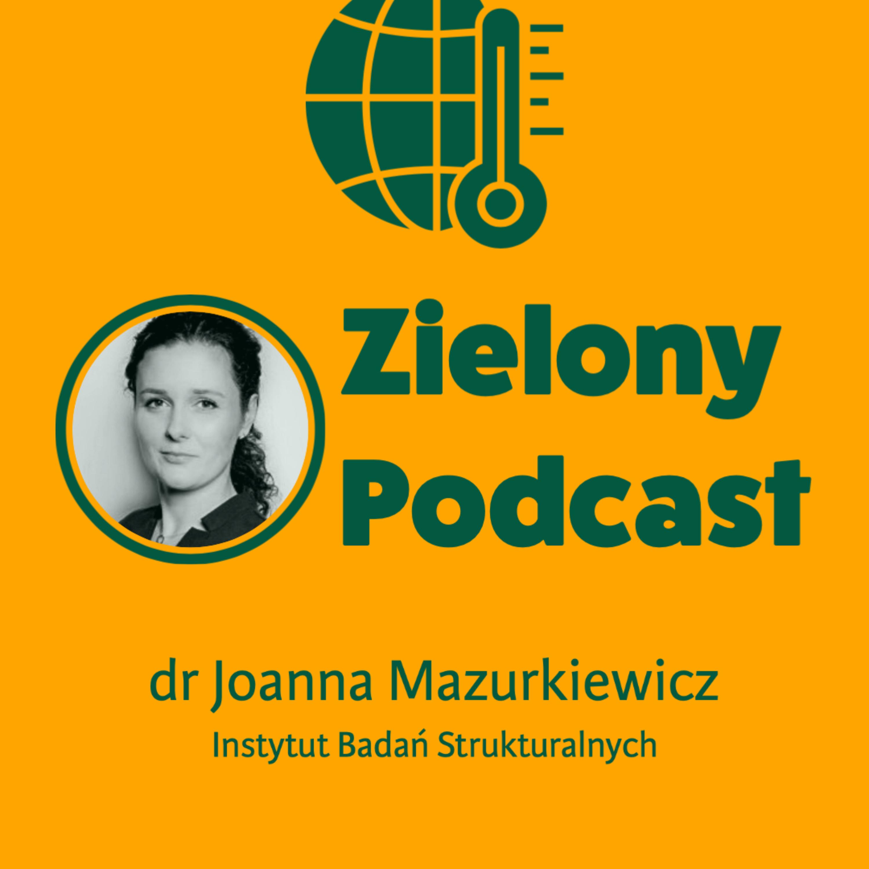 Koniec górnictwa, rozkwit Śląska? Dr Joanna Mazurkiewicz, IBS
