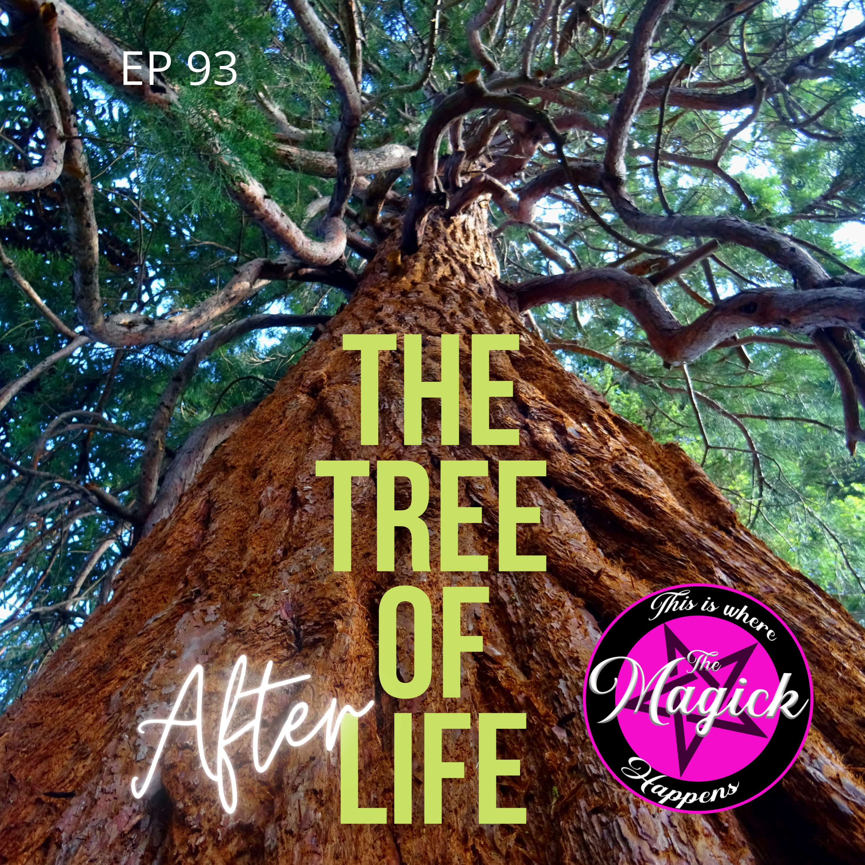 Ep 93 - The Tree of Afterlife