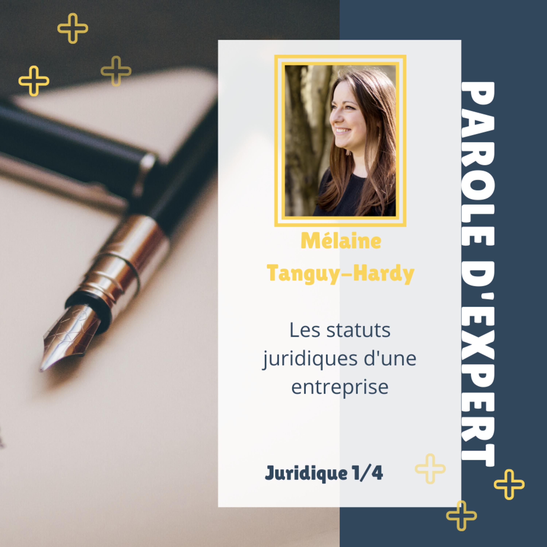 Parole d'Expert 3.1 - Mélaine Tanguy-Hardy : Les statuts juridiques d'une entreprise