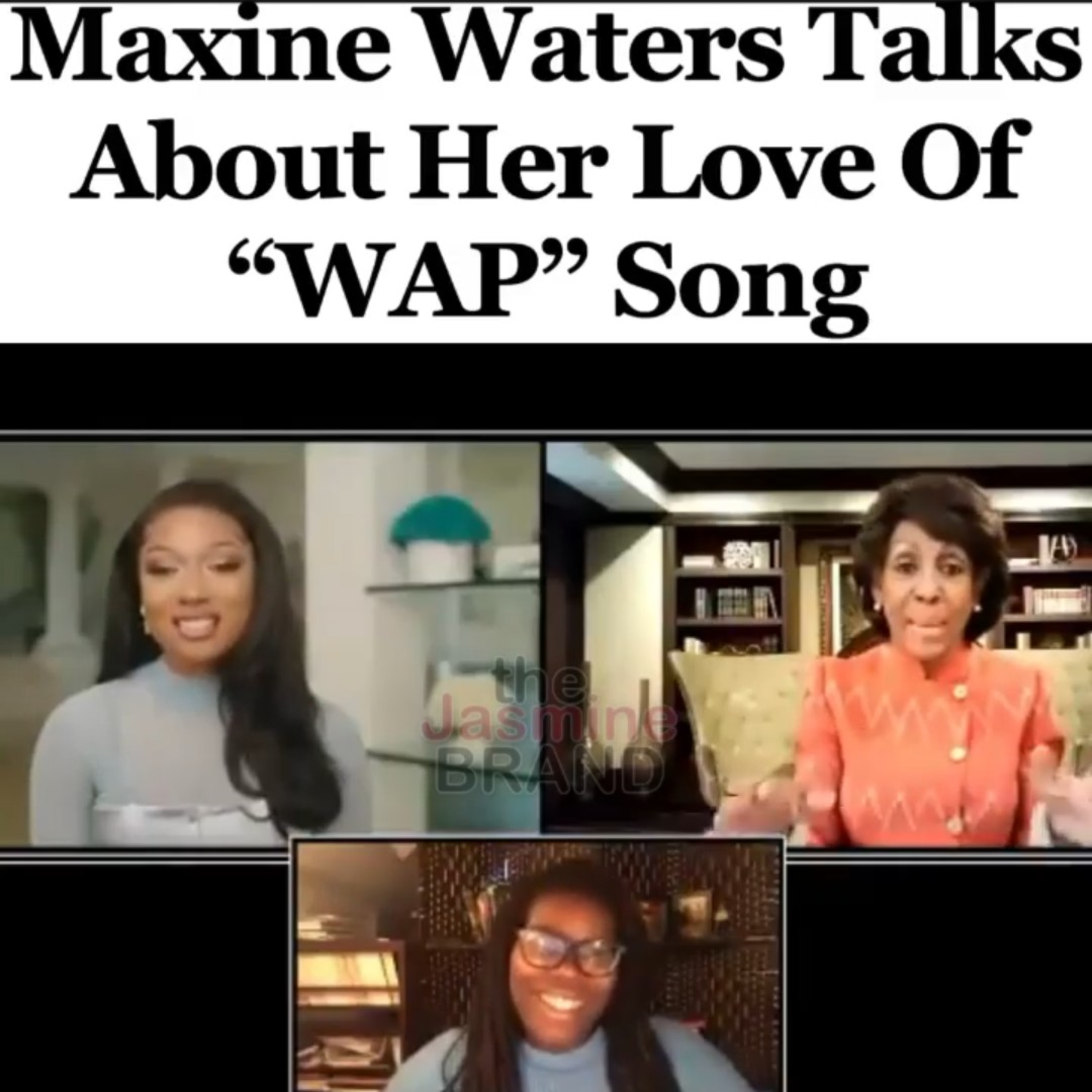 Maxine Waters Should Be Ashamed of Herself For Praising Megan Thee Stallion #trash