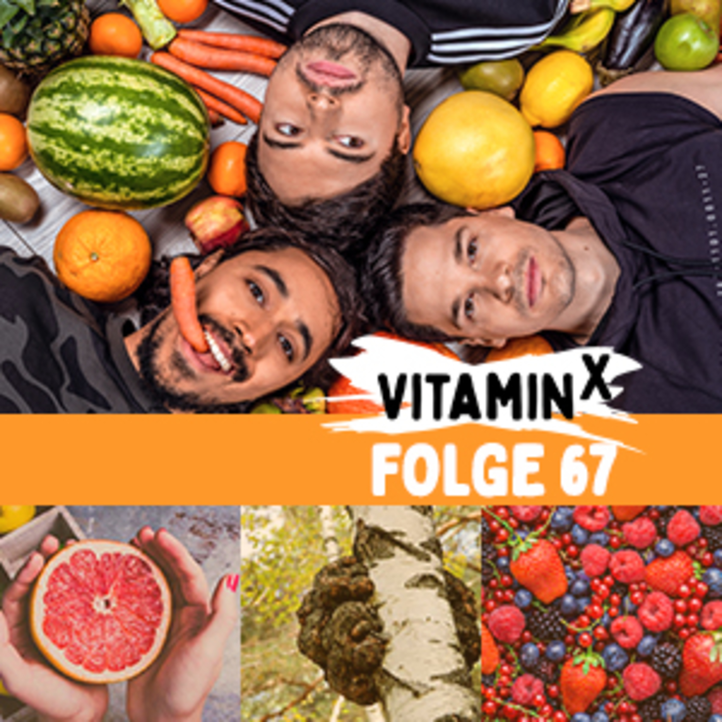 #67 TOP 10 der Superfoods