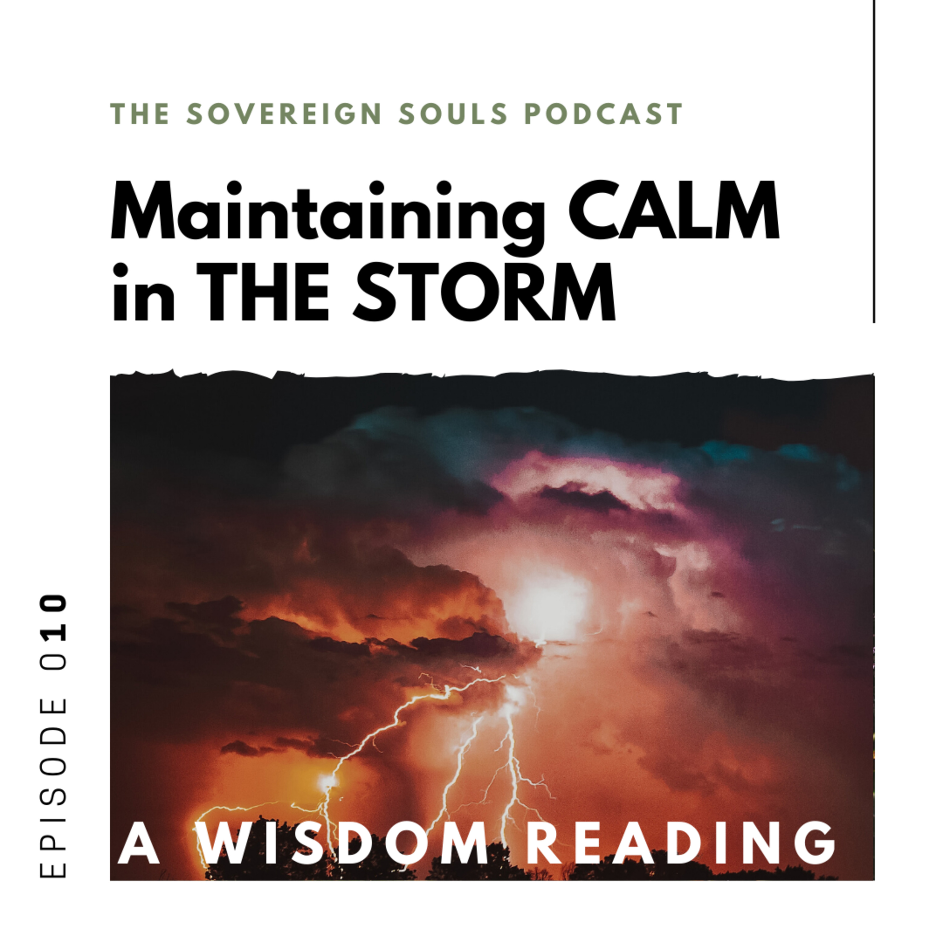 010. Maintaining Calm in The Storm | Wisdom Readings - Energetic Synthesis