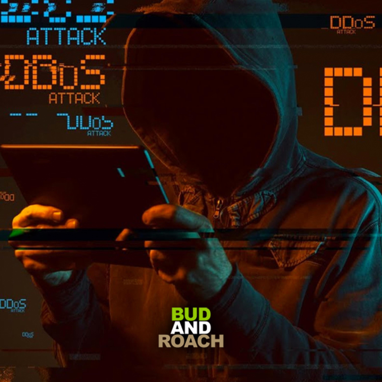 Digital Warfare: A 2020 DDOS Attack? - @BudandRoach