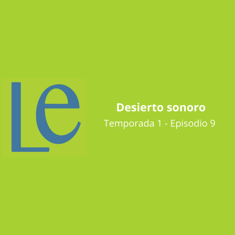 #9 Desierto sonoro