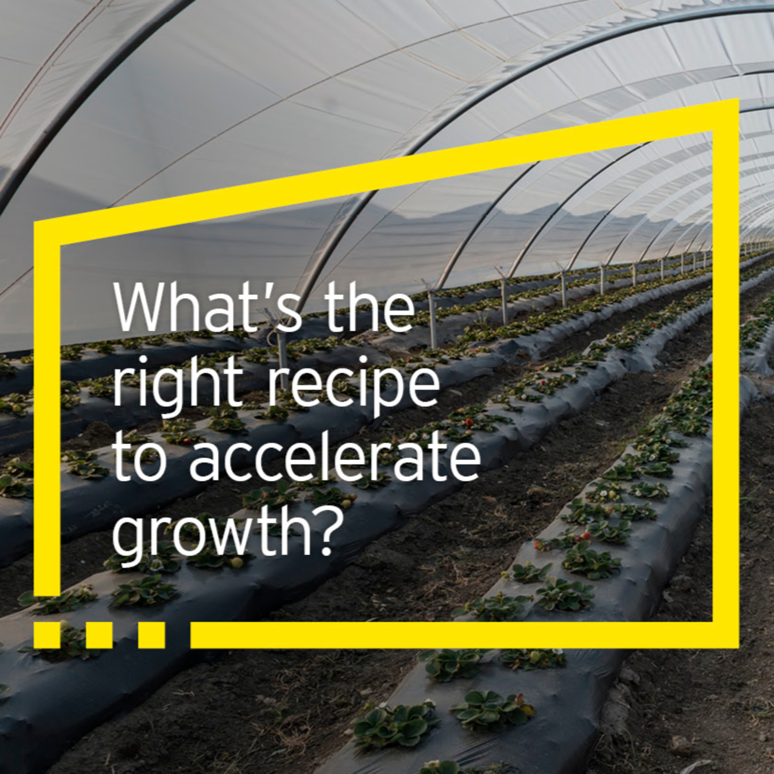 What is the right recipe to accelerate growth?
