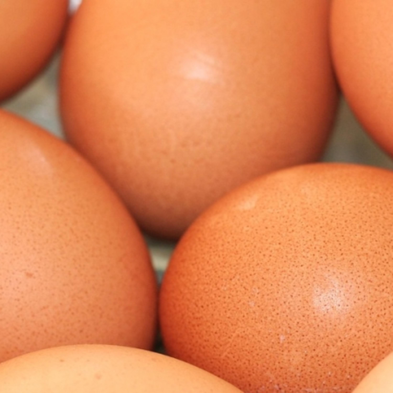 Ovos rancheiros: chef ensina como deixar seu lanche mais gostoso