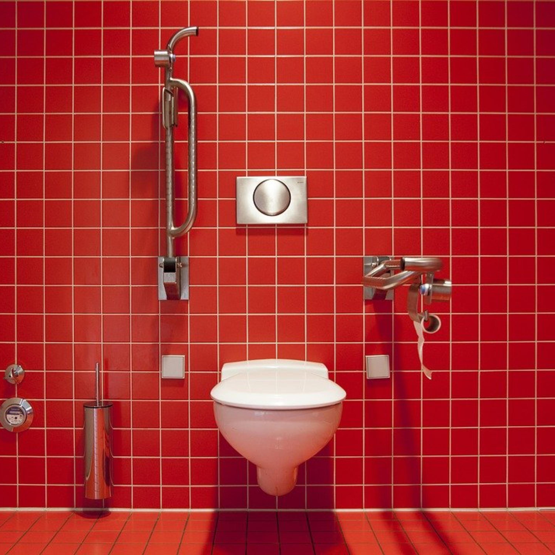 Mosquinhas e larvas de banheiro: saiba como afastá-las!