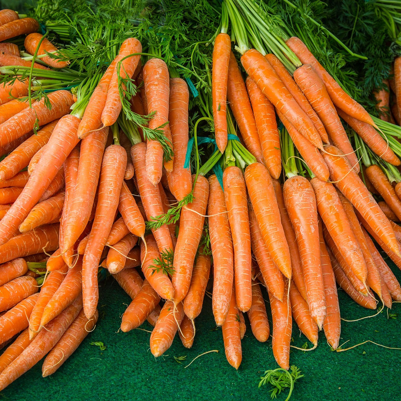 Saiba como armazenar legumes e frutas e evitar o apodrecimento