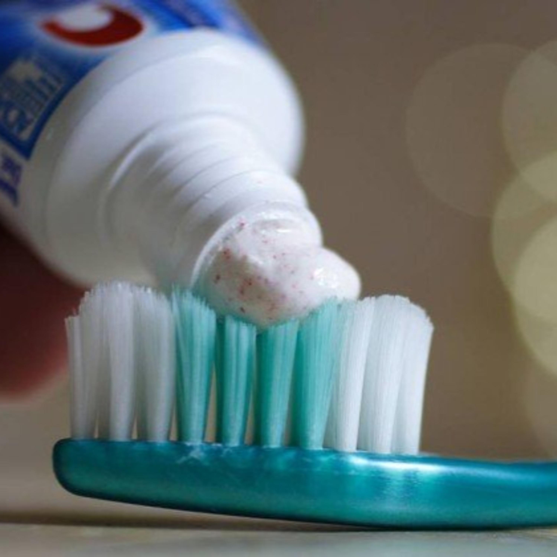 Segredos da Lucy: creme dental pode ser aliado na hora da limpeza!